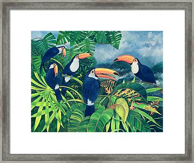Toucan Talk Framed Print by Lisa Graa Jensen