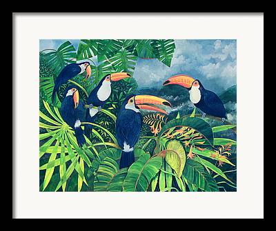 Flocks Of Birds Framed Prints
