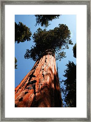 Touch Heaven Framed Print by Brigid Nelson