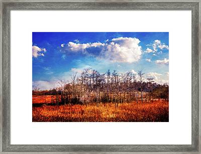 Framed Print featuring the photograph Touch Of Autumn In The Glades by Debra and Dave Vanderlaan