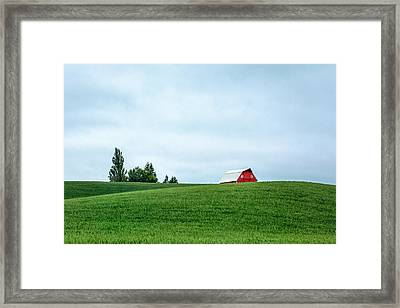 Touch Of Red Framed Print by Todd Klassy