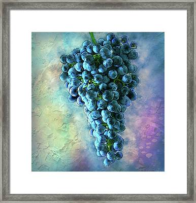 Touch Of The Grape 2 Framed Print