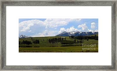 Touching Beauty Framed Print by Christiane Schulze Art And Photography