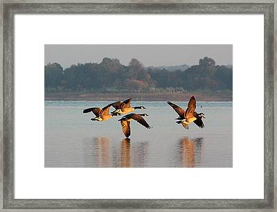 Touching Down At Sunrise Framed Print