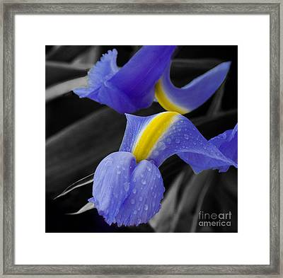Touching Framed Print by Katherine Morgan