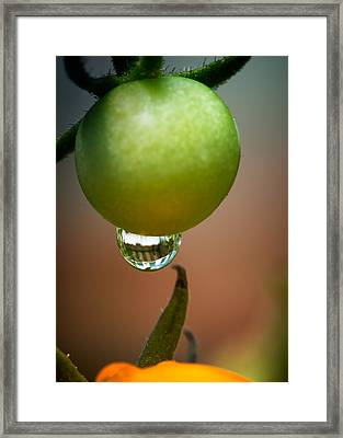 Touching Worlds Framed Print