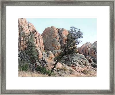 Tough Terrain Framed Print by Gordon Beck