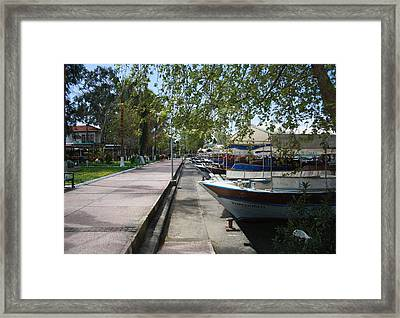 Tour Boats Lining Dalyan River Framed Print