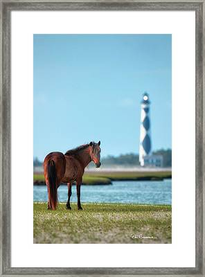 Tour Guide Cape Lookout 3509 Framed Print