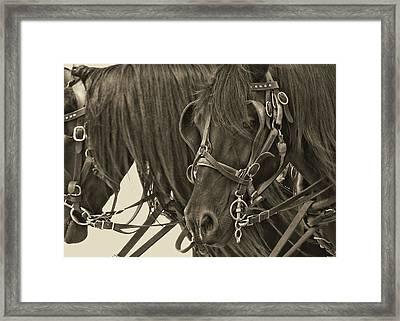 Tour Lexington Pair Framed Print by JAMART Photography