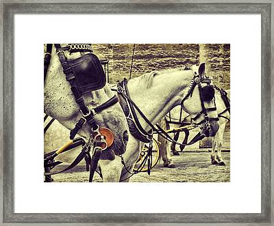 Tour Spain Framed Print by JAMART Photography