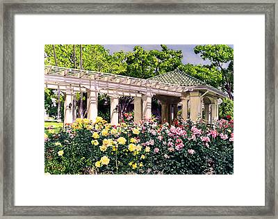 Tournament Of Roses Framed Print by David Lloyd Glover