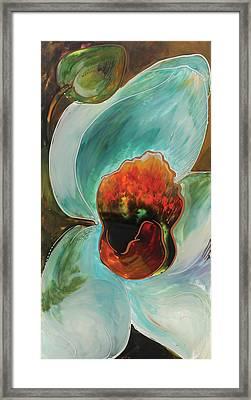 Tourqoise Orchid Framed Print by Vali Irina Ciobanu