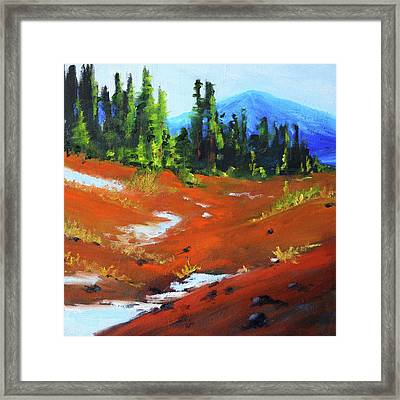 Toward Bachelor Framed Print by Nancy Merkle
