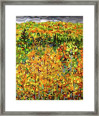 Towards Autumn Framed Print by Mandy Budan