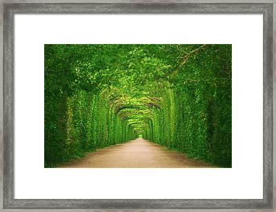 Towards Framed Print