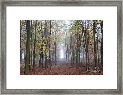 Towards The Light Framed Print