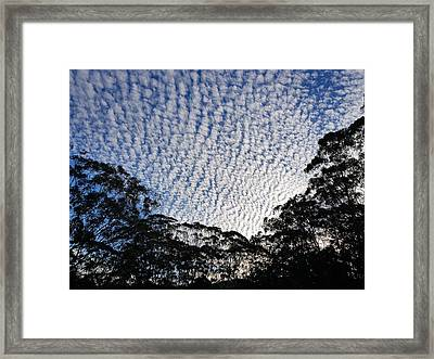 Towen Mountain  Framed Print