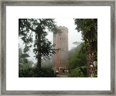 Yokahu Tower In Rainforest Framed Print by Dotti Hannum