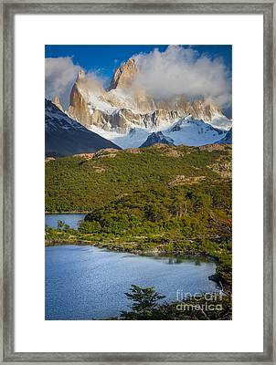 Towering Giant Framed Print by Inge Johnsson