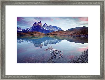 Towers Of The Andes Framed Print by Phyllis Peterson