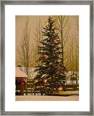 Town Tree Framed Print