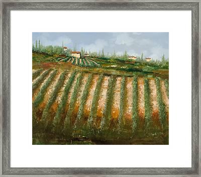 Tra I Filari Nella Vigna Framed Print by Guido Borelli