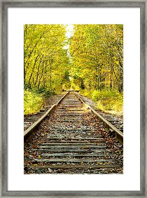 Track To Nowhere Framed Print by Greg Fortier