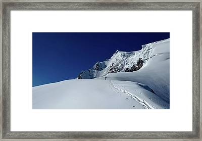 Tracks In The Snow Framed Print by Simon Steinberger