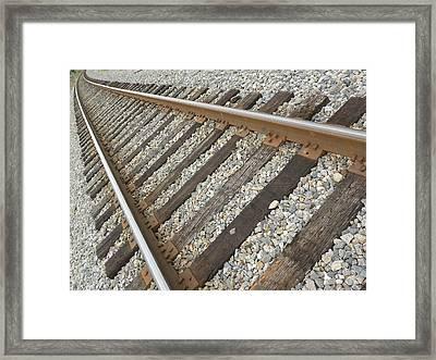 Tracks Framed Print by Kim Zwick