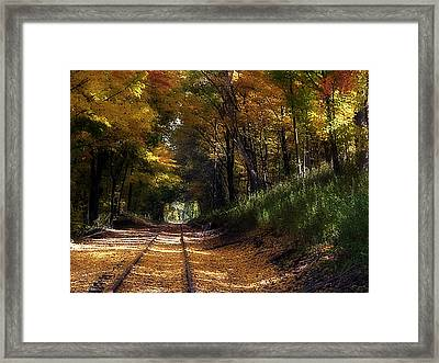 Tracks To Autumn Framed Print