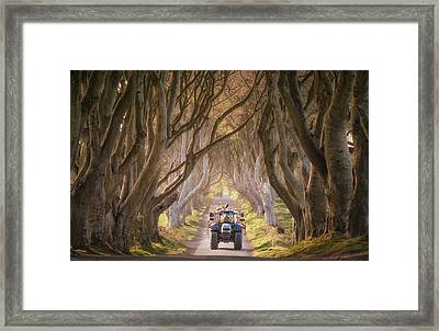Tractor Approaching Through The Dark Hedges Framed Print