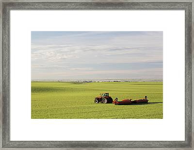 Tractor In A Green Grain Field Pulling Framed Print by Michael Interisano