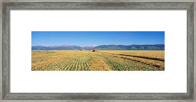 Tractor Mowing Fields Framed Print by Panoramic Images