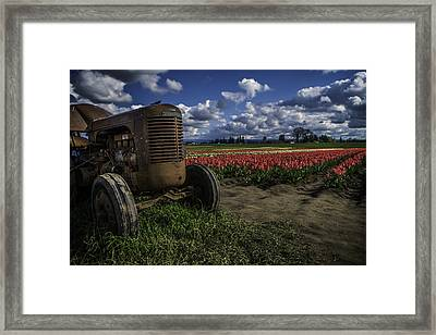 Framed Print featuring the photograph Tractor N' Tulips by Ryan Smith