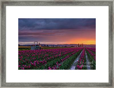 Framed Print featuring the photograph Tractor Waits For Morning by Mike Reid
