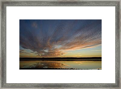 Tragic Beauty Framed Print