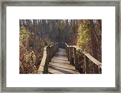 Trail Bridge Framed Print