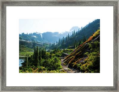 Trail In Mountains Framed Print