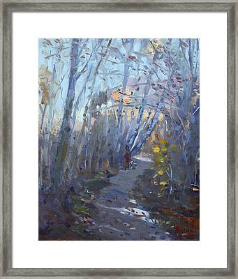 Trail In Silver Creek Valley Framed Print