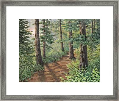 Trail Of Green Framed Print