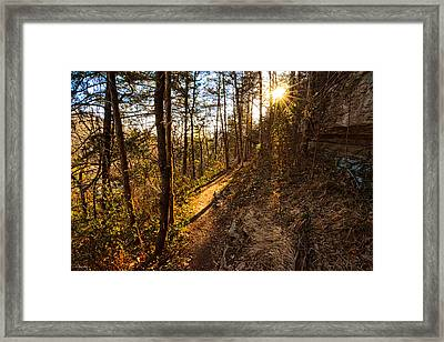 Trail Of Happiness - Blowing Springs Trail Arkansas Framed Print by Lourry Legarde