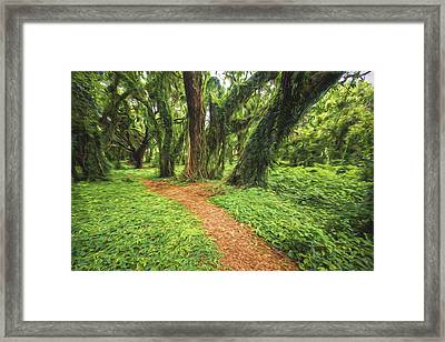 Trail Of Trees IIi Framed Print