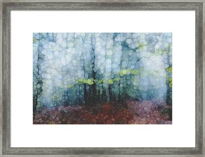 Trail Series 2 Framed Print