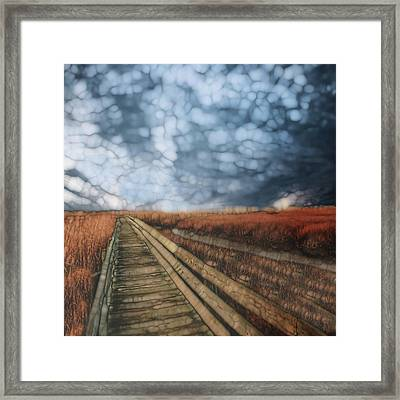 Trail Series 4 Framed Print