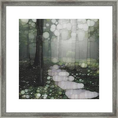 Trail Series 5 Framed Print