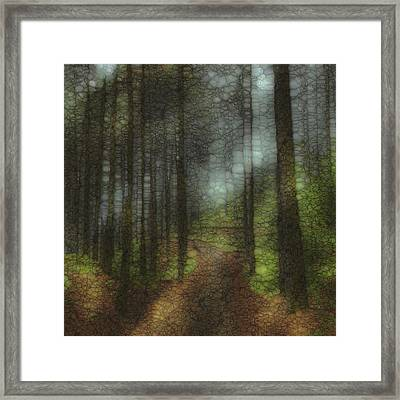 Trail Series 6 Framed Print