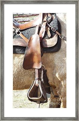 Trail Tack Framed Print
