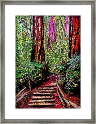 Framed Print featuring the digital art Trail Through The Redwoods - Tamalpais California by Joel Bruce Wallach