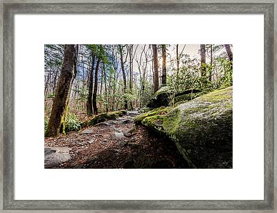 Trail To Rainbow Falls Framed Print by Everet Regal